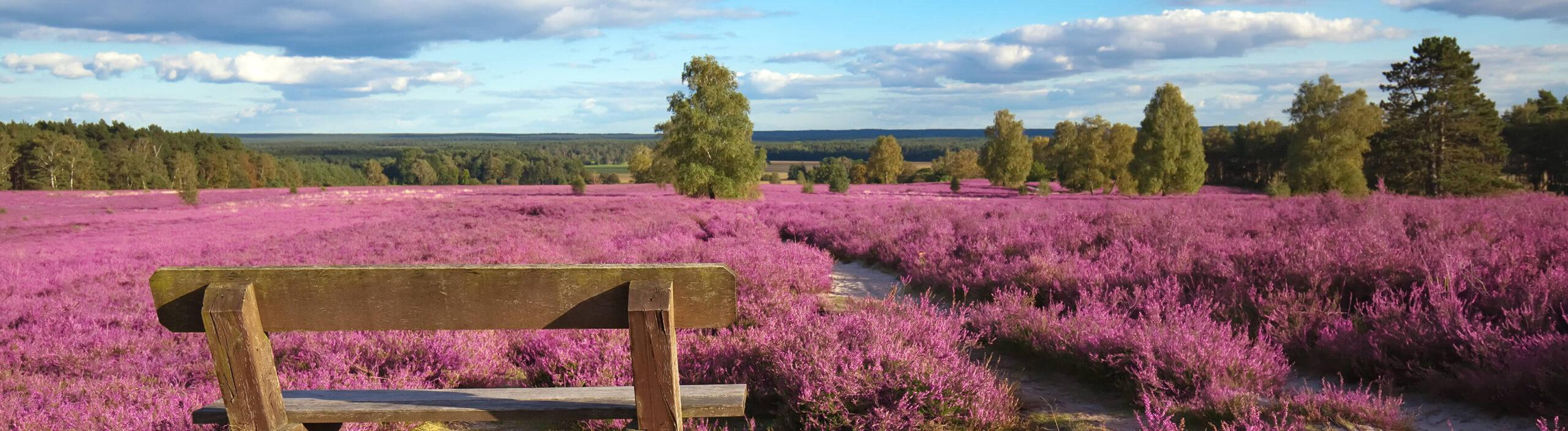 Naturcamping Lüneburger Heide - Unsere Partner