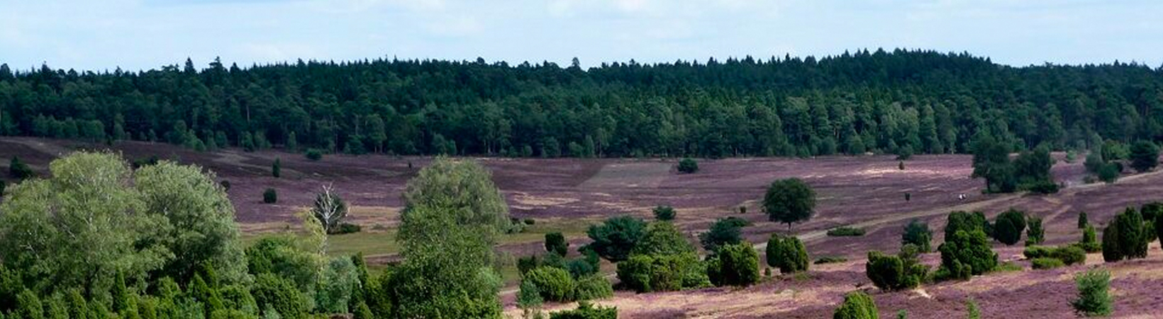 Naturcamping Lüneburger Heide - Region im Überblick